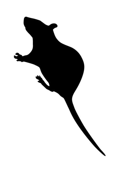 Télécharger dessins & arts divers pochoir rat - halloween