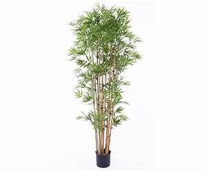 Was Passt Zu Bambus : bambus kunstb ume wetterfest in 1a qualit t hier kaufen ~ Watch28wear.com Haus und Dekorationen