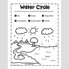 Label The Water Cycle Worksheets