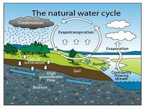 Water Cycle For Class 5
