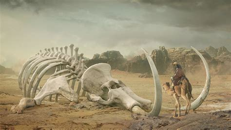 Animal Skeleton Wallpaper - digital desert skeleton mammoths camels