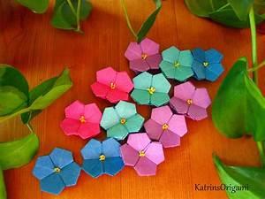 Origami Blumen Falten : origami die kunst des papierfaltens hortensien kusudama ~ Watch28wear.com Haus und Dekorationen