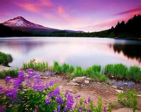 1280x1024 Nature Scenery 1280x1024 Resolution Hd 4k