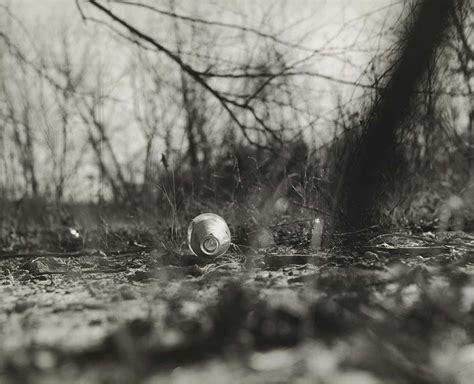 robert adams  john gossages  pond