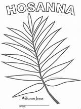 Palm Sunday Coloring Branch Template Crafts Activities Leaf Pages Lesson Easter Children Drawing Printable Craft Catholic Sheet Bible Preschool Sundayschoolkids sketch template