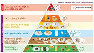 safefood | The Food Pyramid