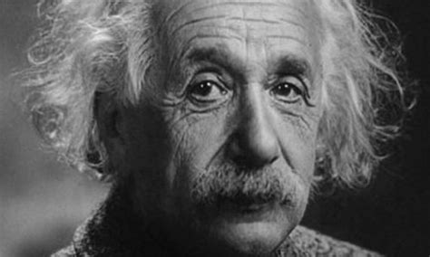Famous Einstein Quotes About Bees Quotesgram