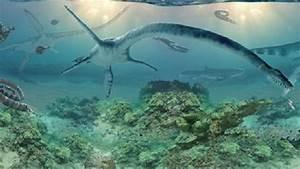 Scientists Discover New Aquatic Dinosaur - YouTube  Aquatic