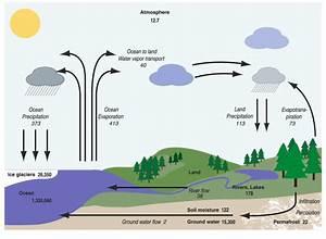 Water Cycle Diagram Numbers