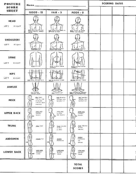 posture chart flourish yoga chiropractic wellness therapy rooms therapy