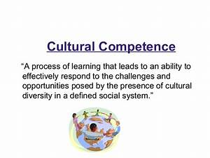 Standardized Cultural Competency In-Service Training