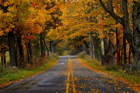 Autumn Roads Wallpapers autumn road hd wallpaper background image 3000x2000