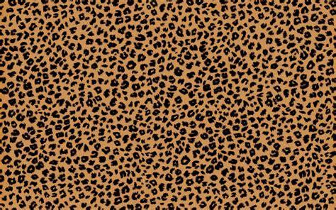 Cheetah Print Desktop Wallpaper Cheetah Background Wallpapersafari