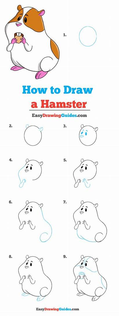 Hamster Draw Drawing Tutorial Easy Really Printable