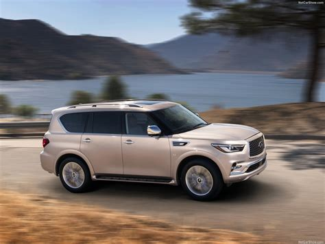 Infiniti Qx80 Picture by Infiniti Qx80 2018 Picture 16 Of 73