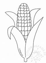 Template Corn Coloring Printable Pages Thanksgiving Cob Stalk Drawing Candy Sheets Preschool Templates Shocks Sheet Stalks Fall Printables Indian Cartoon sketch template