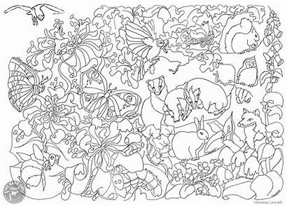 Colouring Wildlife British Coloring Pages Woodland Blaise