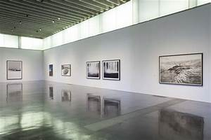 Wilderness | The New Art Gallery Walsall  Gallery