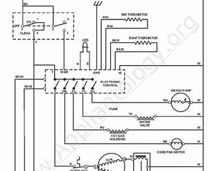 Wiring Database 2020  26 Whirlpool Refrigerator Parts Diagram