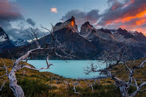 david koester hyperrealistic landscapes
