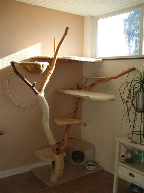katzentreppe selber bauen katzentreppe selber bauen