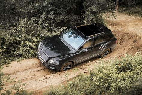 Bentley Bentayga Modification bentley bentayga pictures photos information of