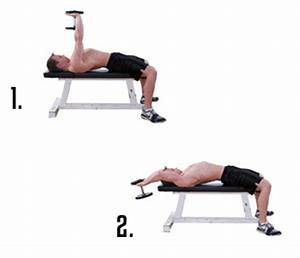 Top 12 Best Back Exercises - Surge Fitness Jersey City