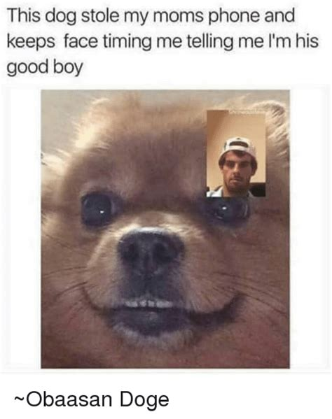 Dog On Phone Meme - funny face time memes of 2017 on sizzle good talk