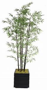 Laura Ashley 78-inch Tall Black Bamboo Tree in Fiberstone ...