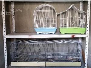 Gabbie X Uccelli Usate - gabbie uccelli usate posot class