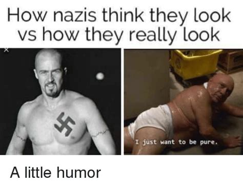 Leukemia Nazi Meme - how nazis think they look vs how they really look i just want to be pure a little humor meme