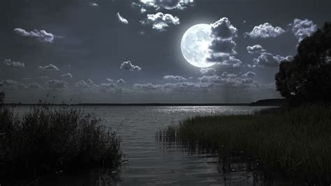 nature full moon night landscape stock footage video