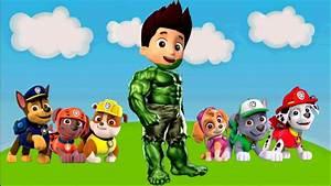 Pat Patrouille Francais Youtube : la pat 39 patrouille transform superheroes hulk spiderman youtube ~ Medecine-chirurgie-esthetiques.com Avis de Voitures
