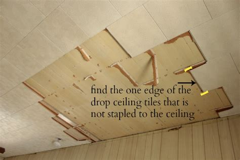 how to remove a drop ceiling drop it like it s hot