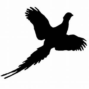 Pheasant Clip Art - Cliparts.co