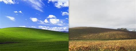 Windows 98 Desktop Background Rip Windows Xp The Story Behind 39 Bliss 39 The Most Iconic Wallpaper Of All Time Extremetech
