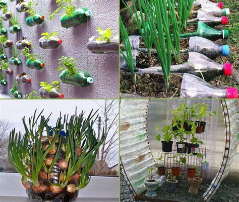 diy plastic bottle garden projects naturebring
