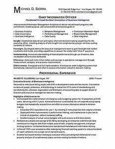 chief information officer cio resume example resume With cio resume template
