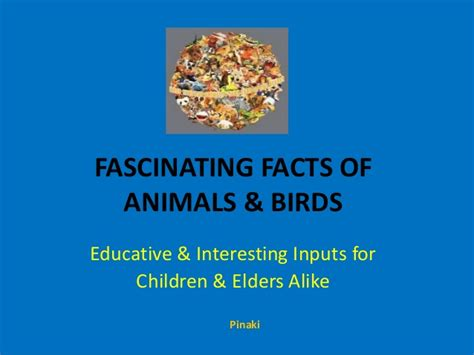 Fascinating Facts Of Animals & Birds
