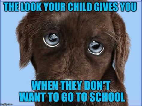 Puppy Dog Eyes Meme - puppy dog eyes imgflip