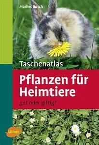 Welche Pflanzen Sind Für Hunde Giftig : taschenatlas pflanzen f r heimtiere gut oder giftig ~ Watch28wear.com Haus und Dekorationen