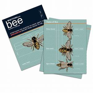 The Beeattitudes Buzz Bee Manual