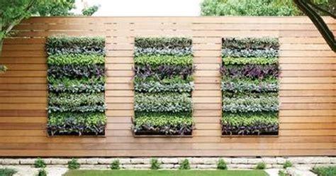 Gutter Vertical Garden by Vertical Garden Gutter Gutter Vertical Garden