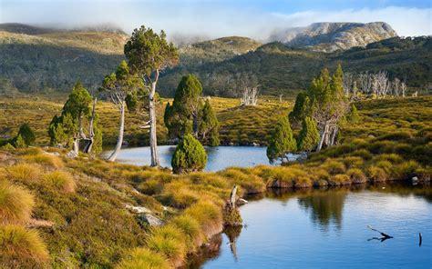 tasmania australia lake mountain grass trees water