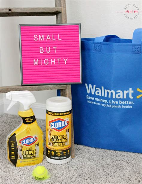 supplies  small dogs   mom