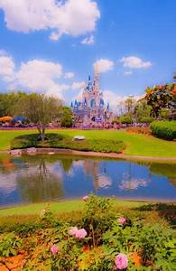 How Much Does A Walt Disney World Vacation Cost Disney