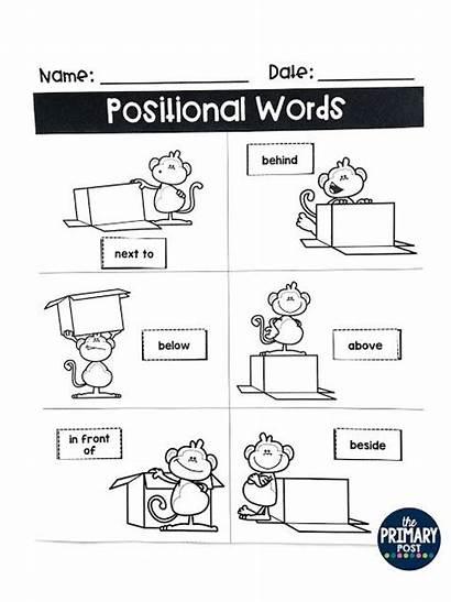 Positional Words Word Activities Kindergarten Preschool Worksheets