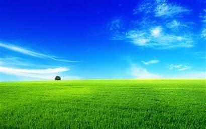 Landscape Summer Wallpapers Nature Backgrounds Desktop Calm