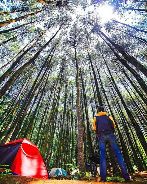 bingung liburan   yuk coba  tempat camping seru