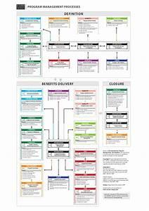 Program Management Processes Flow In English